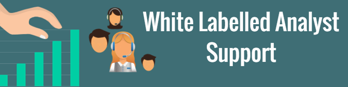 digital global agency white labelled analyst support marketing
